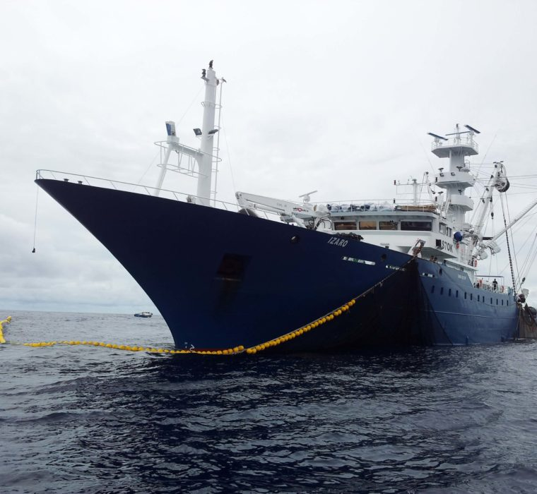 atún rabil pescado a banco libre en el Océano Atlántico.